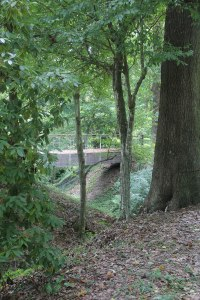One of the bridges in the LSU arboretum