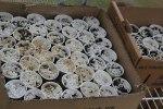 Cardboard boxes become seedling hosts.