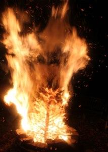 2016-tree-burn-1